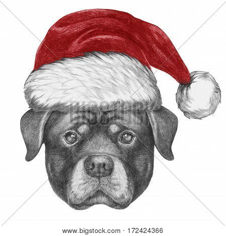 Portrait of Rottweiler with Santa Hat. Hand drawn illustration.
