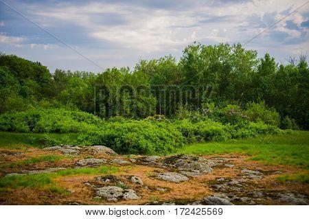 Spring Park in rural landscape   nasty day