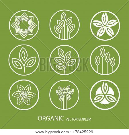 Vector set abstract emblem, outline monogram, flower symbol, concept for organic shop or yoga studio, logo design template, linear logo design template, organic food and farming, green, vegan food concept, stamp
