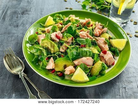 Healthy Salmon, Avocado salad with watercress and goji berries, pumpkin seed mix on green plate.