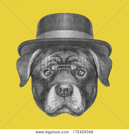 Portrait of Rottweiler with hat. Hand drawn illustration.