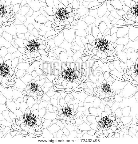 Lotus Flower Coloring Seamless Pattern. Vector Illustration