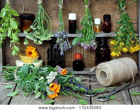 Bunches Of Healing Herbs - Mint, Yarrow, Lavender, Clover, Hyssop, Milfoil, Mortar With Flowers Of C