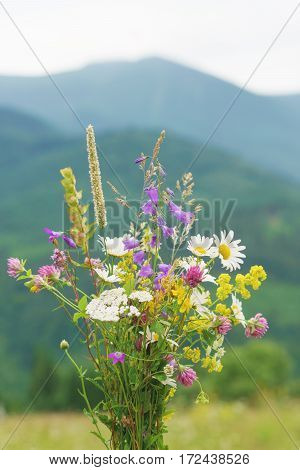 Wild flowers and herbs bouquet over mountains background.