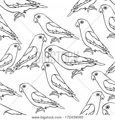 Seamless Pattern Lovebirds Parrot With A Red Beak Coloring  Vector Illustration