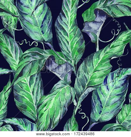 Natural leaves exotic watercolor seamless pattern, green tropical leaves, dense jungle, Hand painted botanical summer illustration on black background