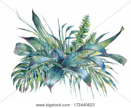 Natural leaves exotic watercolor greeting card, green tropical leaves, ferns, dense jungle, Hand painted botanical summer illustration on white background