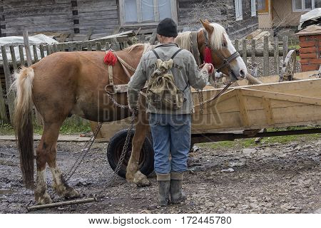 Synevyrska Polyana Ukraine - April 21 2016: Farmer put the horse near the house