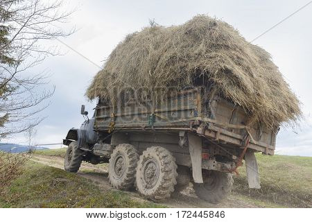 Old truck loaded with hay rides in the highlands