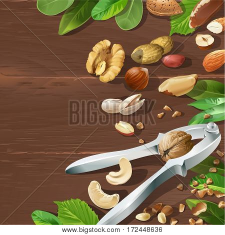 Vector illustration of nutcracker and nuts - cashews, walnuts, almonds, pine nuts, hazelnuts, brazil nuts peanuts pistachio arranged on a wooden background