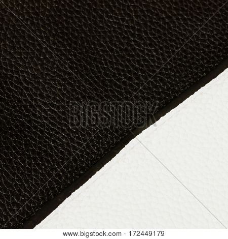 Texture of genuine leather close-up, always fashion combination, black and white color. Square. For modern pattern, wallpaper or banner design. With place for your text