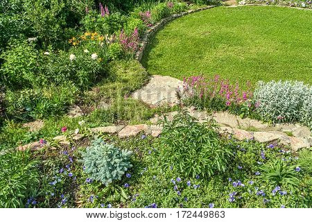 Decorative blooming alpine slide and green lawn in the garden on a summer day