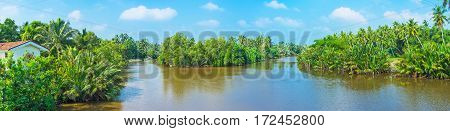 Panorama of Gin Oya tropical river with green islands covered with mangroves and palm gardens Nainamadama Sri Lanka.
