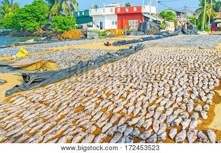 The Basis Of Coastal Cuisine