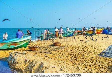 Morning In Negombo Port