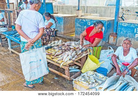 The Old Fish Traders