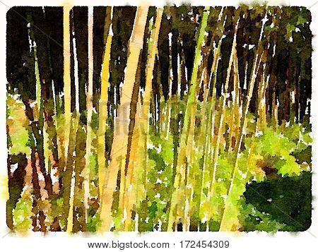 Digital watercolor painting of a close up of bamboo shoots growing.