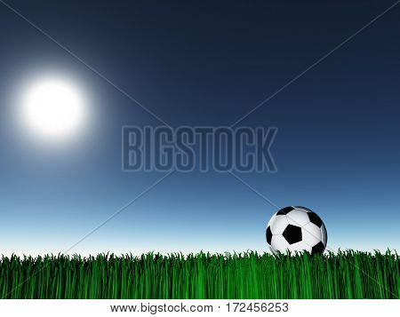 Soccer ball on grass  3D Rendered