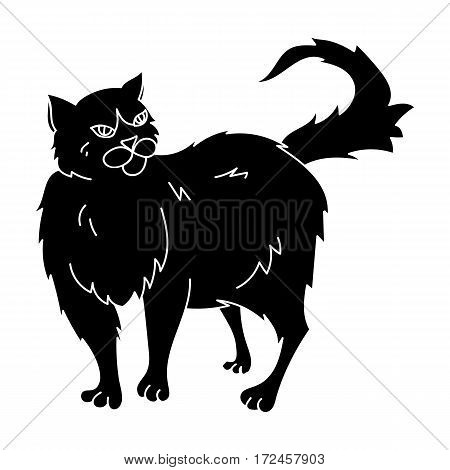 Persian icon in black design isolated on white background. Cat breeds symbol stock vector illustration.
