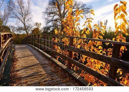 Sunset on autumn fall wood bridge at Parque de Turia of Valencia park in spain