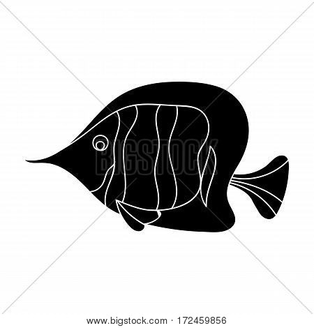 Angel fish icon in black design isolated on white background. Sea animals symbol stock vector illustration.