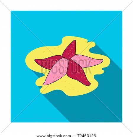 Seastar icon in flat design isolated on white background. Sea animals symbol stock vector illustration.