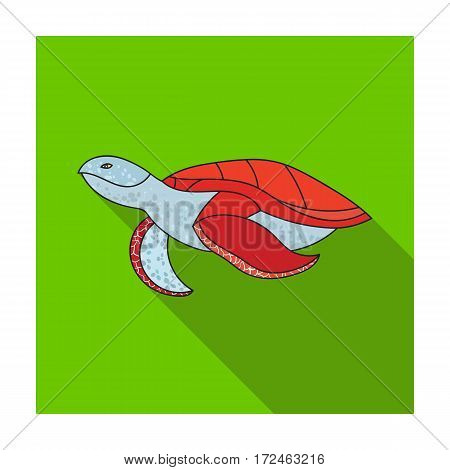 Sea turtle icon in flat design isolated on white background. Sea animals symbol stock vector illustration.