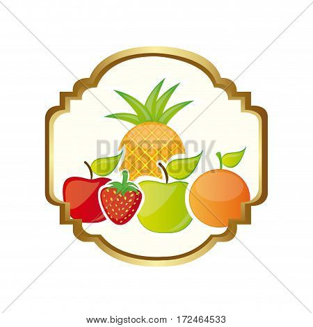 colorful silhouette decorative heraldic frame with still life fruits vector illustration