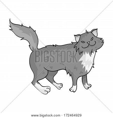 Norwegian Forest Cat icon in monochrome design isolated on white background. Cat breeds symbol stock vector illustration.