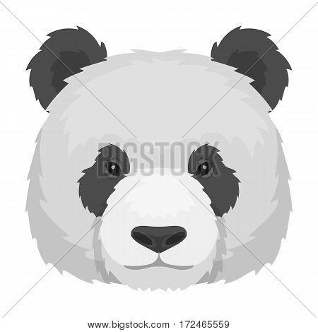 Panda icon in monochrome design isolated on white background. Realistic animals symbol stock vector illustration.