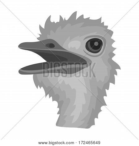 Ostrich icon in monochrome design isolated on white background. Realistic animals symbol stock vector illustration.