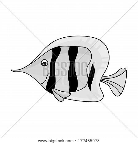 Angel fish icon in monochrome design isolated on white background. Sea animals symbol stock vector illustration.