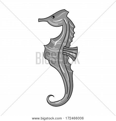 Seahorse icon in monochrome design isolated on white background. Sea animals symbol stock vector illustration.