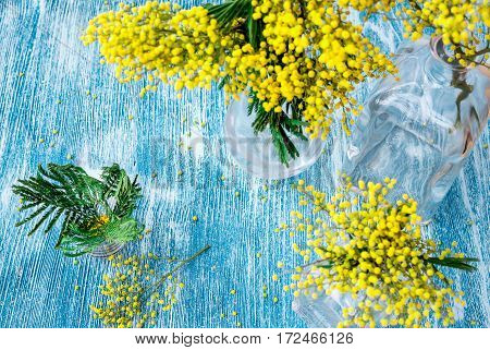 mimosa in glass vase on table top view mock up.