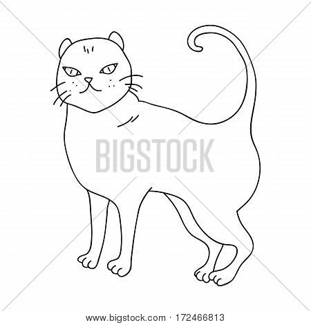 British Shorthair icon in outline design isolated on white background. Cat breeds symbol stock vector illustration.