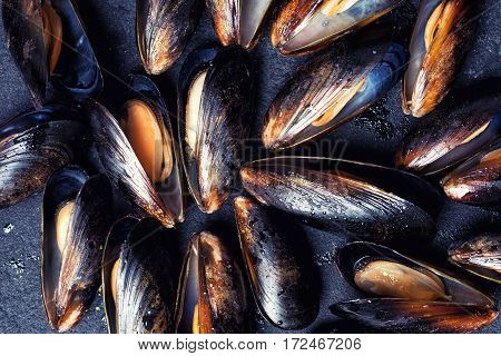 Texture of mussels on black stone background