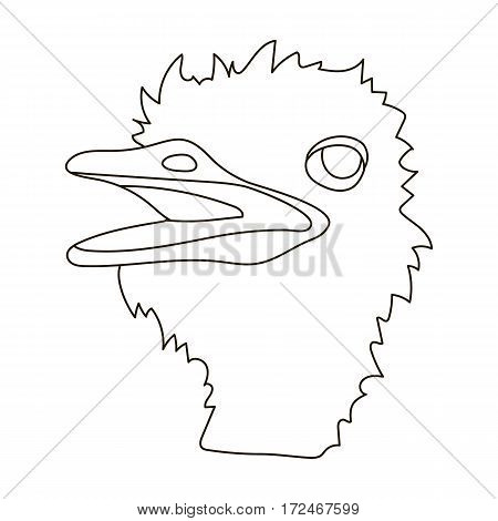 Ostrich icon in outline design isolated on white background. Realistic animals symbol stock vector illustration.