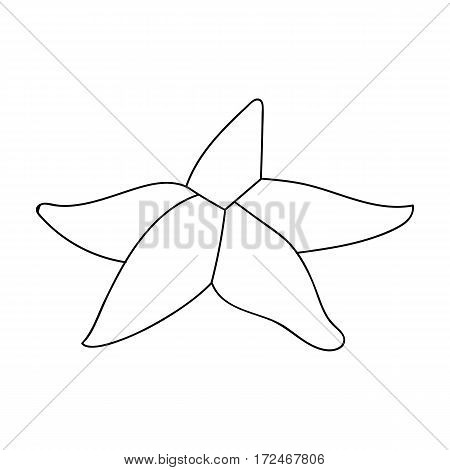 Seastar icon in outline design isolated on white background. Sea animals symbol stock vector illustration.