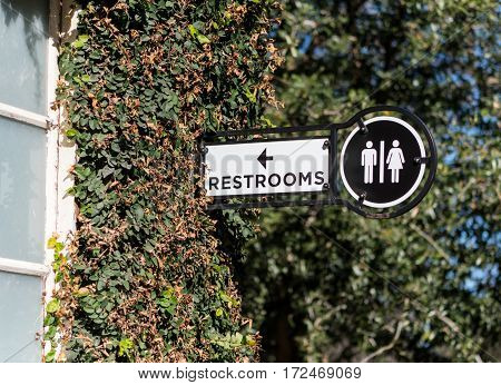 Restroom Sign on Ivy Wall in bright morning light