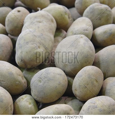 Background with the image of potatos