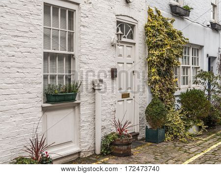 beautiful white facade of the building an interesting entrance to the house a beautiful corner of greenery potted plants vines on the wall heather and ivy
