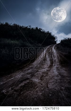 Landscape In Nature Of Beautiful Full Moon With A Muddy Road Through A Forest.