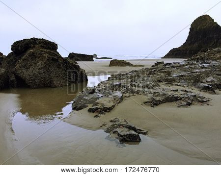 Low tide exposes large crustacean covered rocks