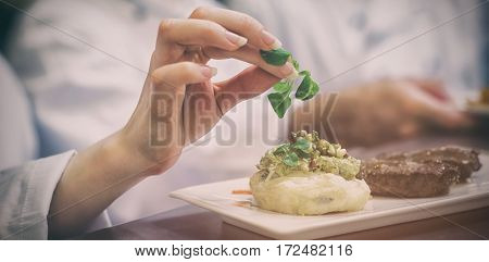 Female chef garnishing a plate with steak in kitchen
