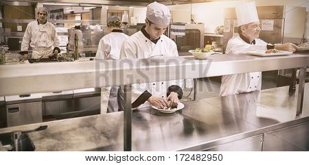 Team of chefs working in professional kitchen