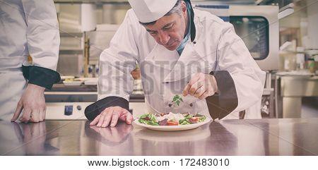 Focused chef garnisning salad in kitchen