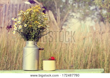 bouquet of wild flowers and ripe strawberry in a cup on the background of the rural landscape / picnic on weekends in the countryside