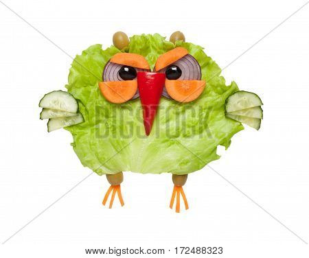 Cunning owl made of green vegetables on isolated background