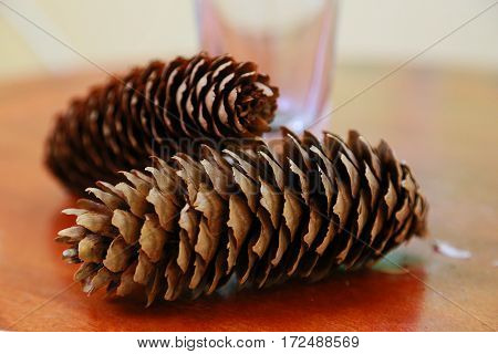Scenery of the pinecone on the table
