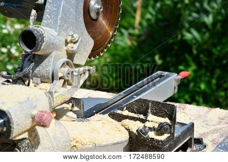 Circular saw on the background of nature in summer